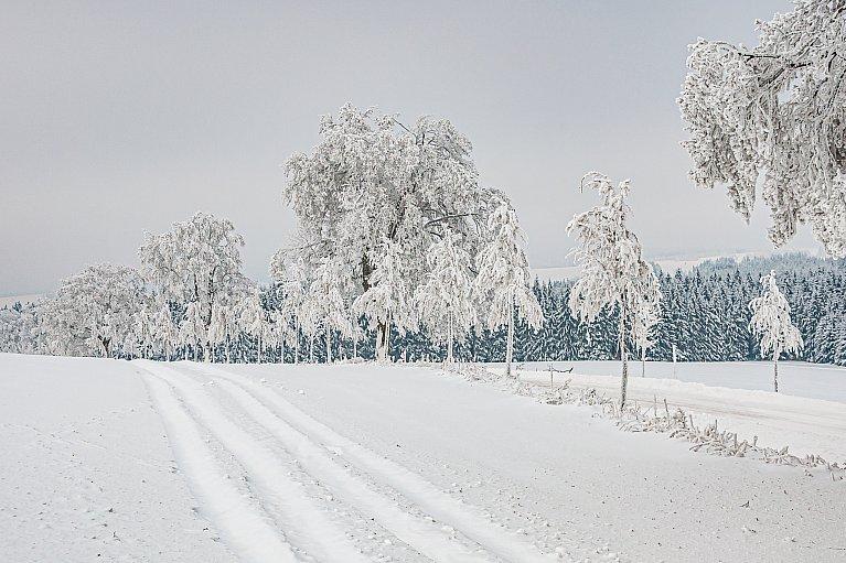 Zima w Czechach
