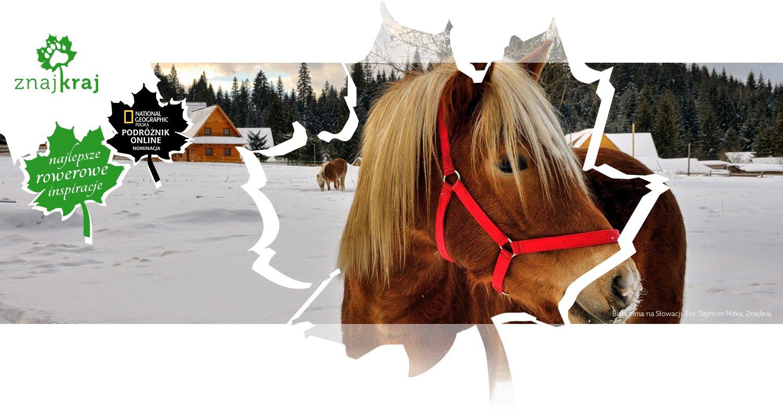 Biała zima na Słowacji