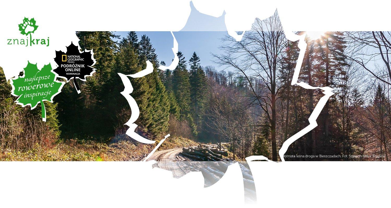 Błotnista leśna droga w Bieszczadach