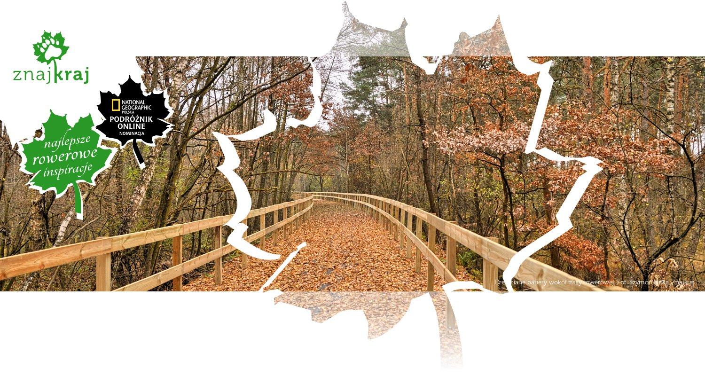 Drewniane bariery wokół trasy rowerowej