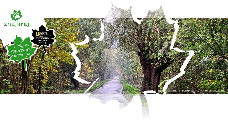 Droga - objazd głównej trasy przed Węgierską Górką