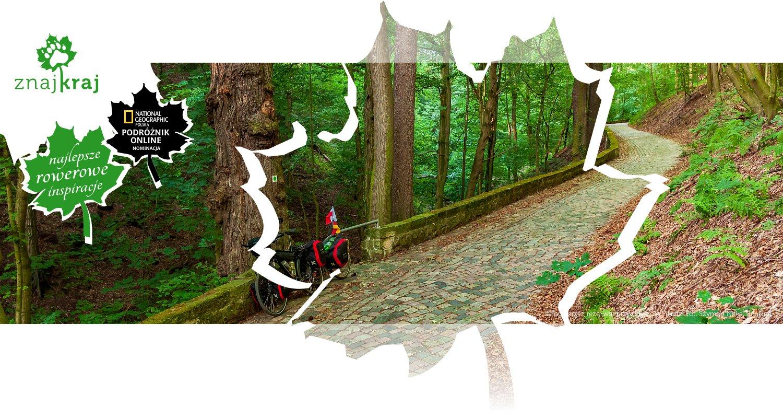 Droga przez rezerwat przyrody koło Pillnitz