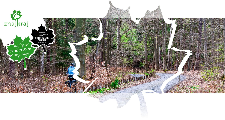 Droga rowerowa obok starego leśnego bruku
