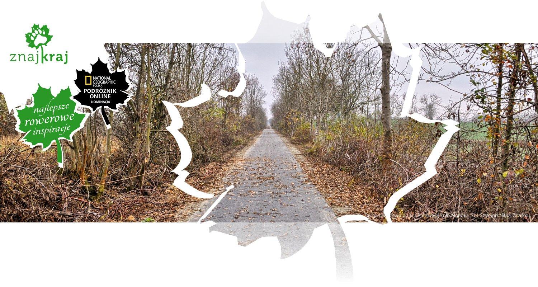 Droga rowerowa po linii kolejowej koło Morynia