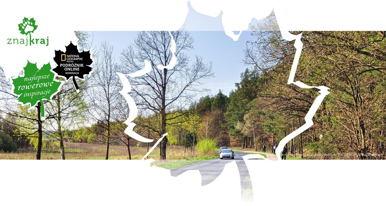 Droga rowerowa przed Koronowem