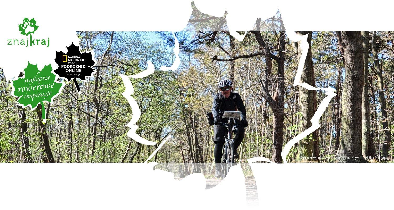Droga rowerowa w Jastarni