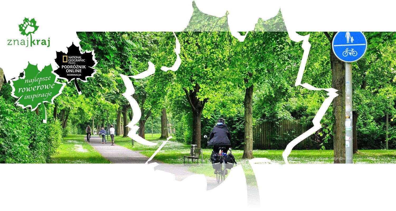 Droga rowerowa w parku w Getyndze