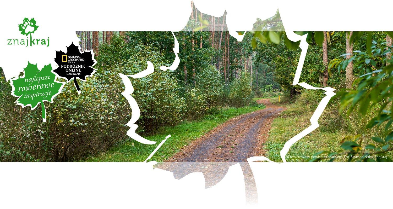 Droga rowerowa w powiecie toruńskim