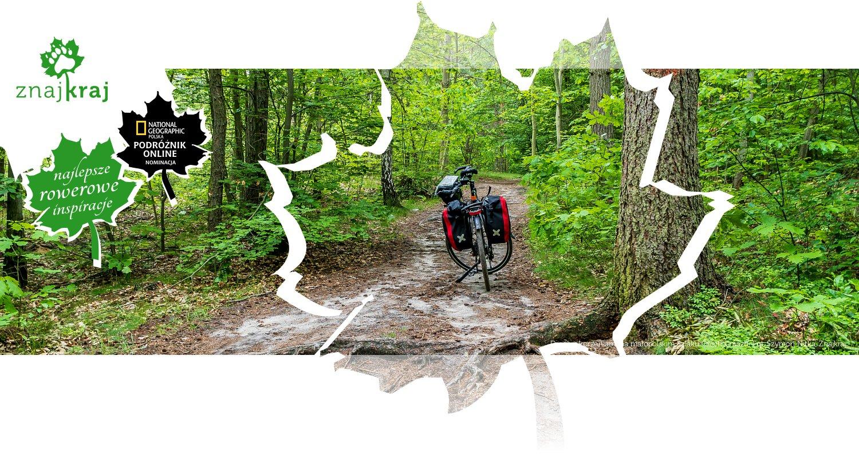 Droga z korzeniami na małopolskim Szlaku Orlich Gniazd
