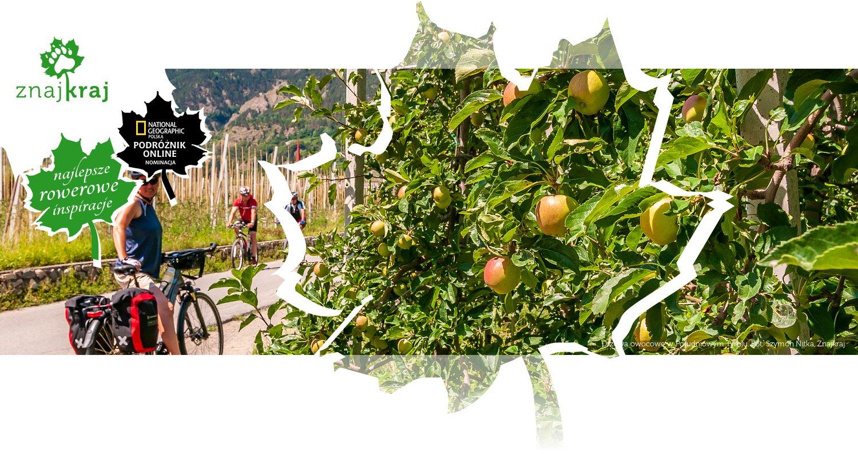 Drzewa owocowe w Południowym Tyrolu