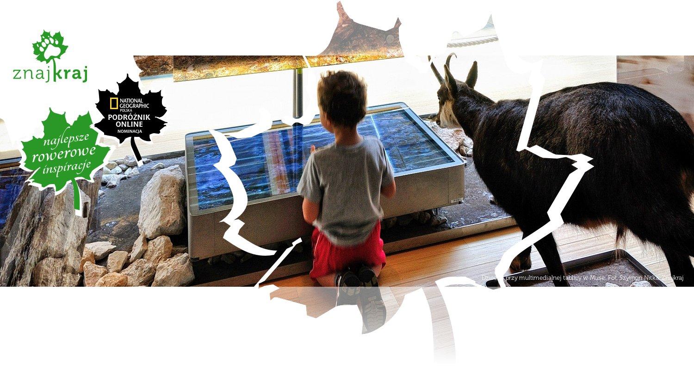 Dziecko przy multimedialnej tablicy w Muse