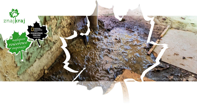 Ekskrementy na parterze dworu w Łętowie