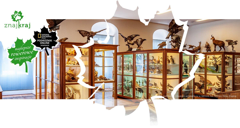Gabinet osobliwości - muzeum przyrodnicze w Admont