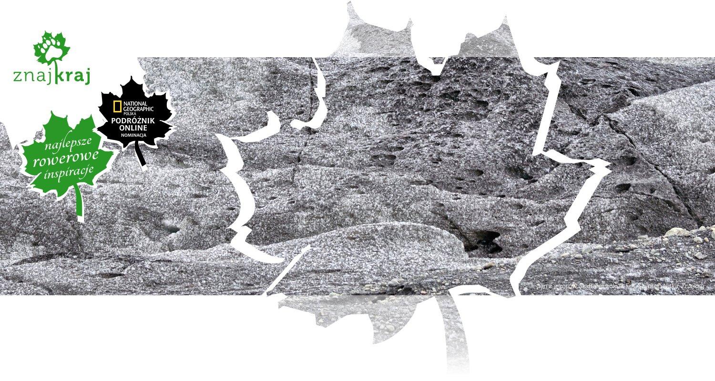 Jeden z jęzorów Skaftafellsjökull