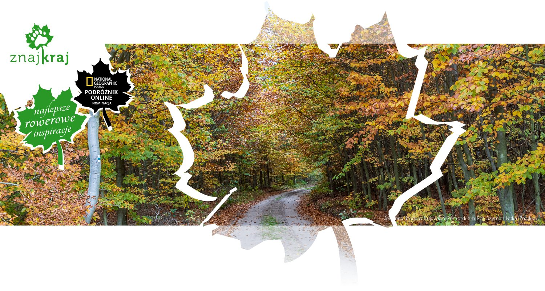 Jesienna droga w Kujawsko-Pomorskiem