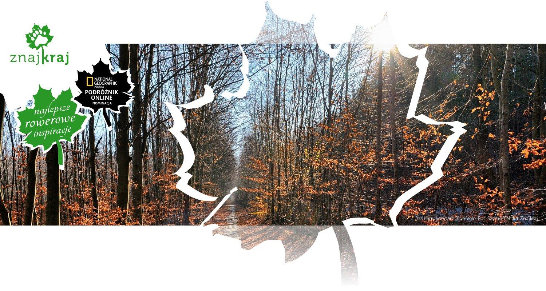 Jesienny korytarz Blue Velo