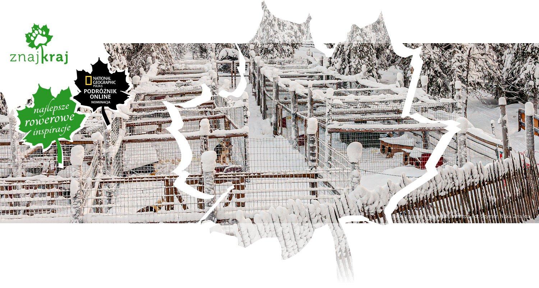 Klatki z psami husky w Lammintupa