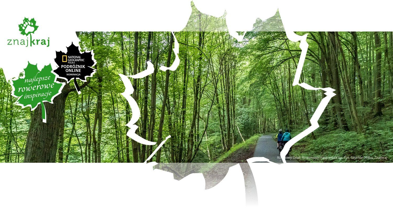 Kolejowy Szlak Rowerowy Hesji przez las