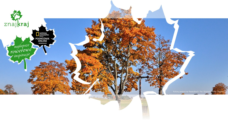 Kolory jesieni na Kaszubach