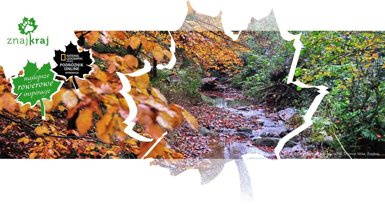 Kolory jesieni w Beskidach