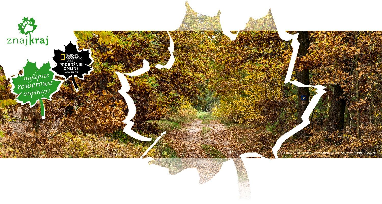 Kolory jesieni w Kujawsko-Pomorskiem