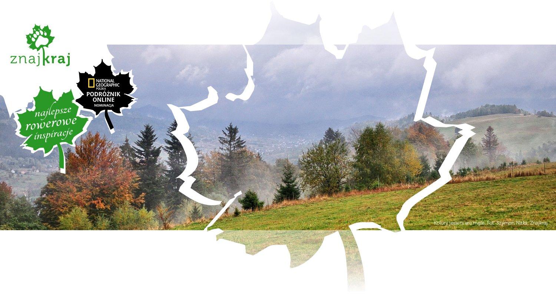 Kolory jesieni we mgle