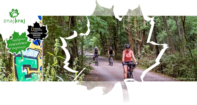 Leśna droga rowerowa w Lipsku