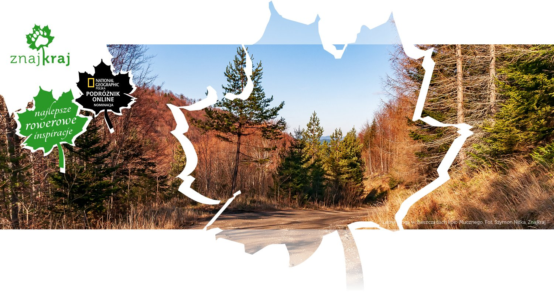 Leśna droga w Bieszczadach koło Mucznego