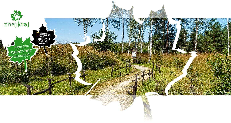 Leśna ścieżka edukacyjna na Śląsku