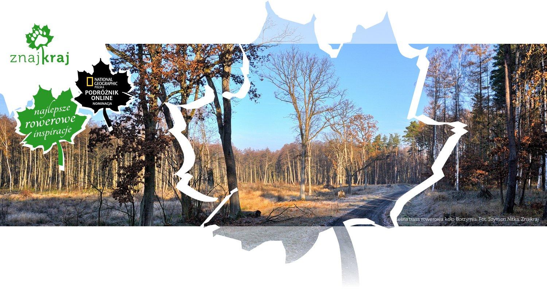 Leśna trasa rowerowa koło Borzymia