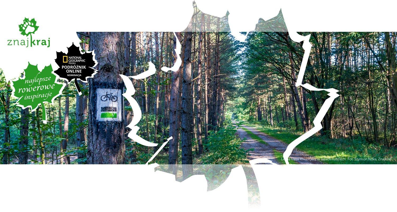 Leśna trasa rowerowa w lasach rudzkich