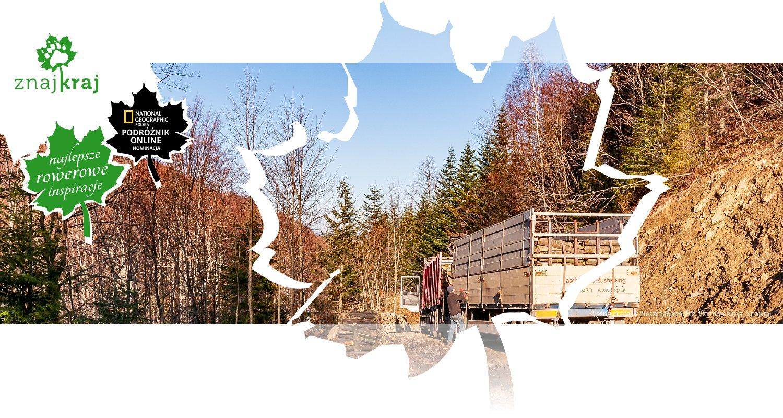 Leśne prace w Bieszczadach