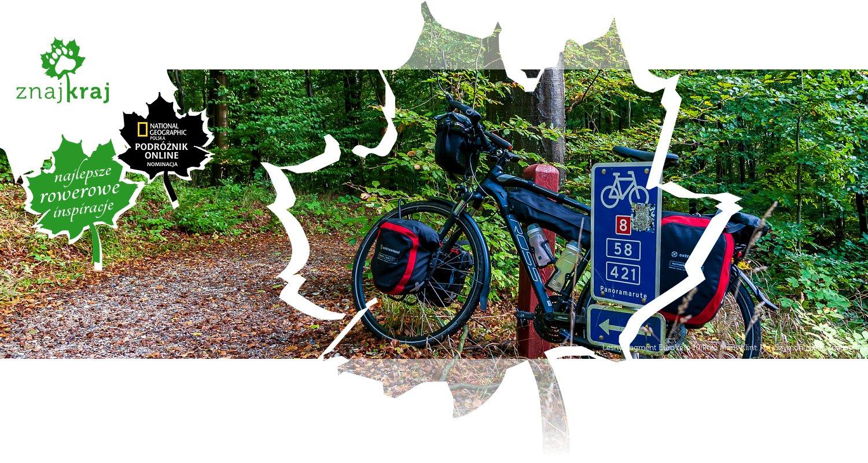 Leśny fragment EuroVelo 10 koło Møns Klint
