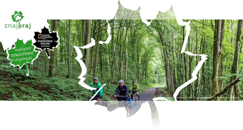 Leśny fragment Kolejowego Szlaku Rowerowego Hesji