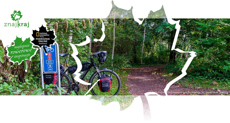 Leśny fragment trasy rowerowej koło Stubbekøbing