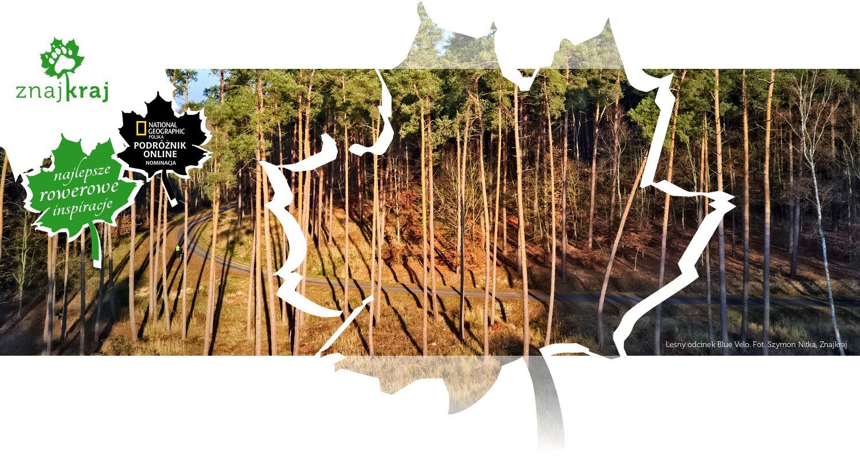 Leśny odcinek Blue Velo