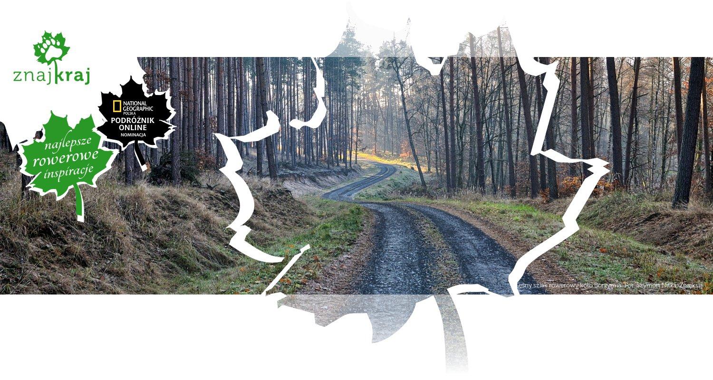 Leśny szlak rowerowy koło Borzymia