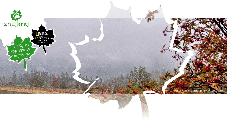 Mgła nad Beskidem Śląskim