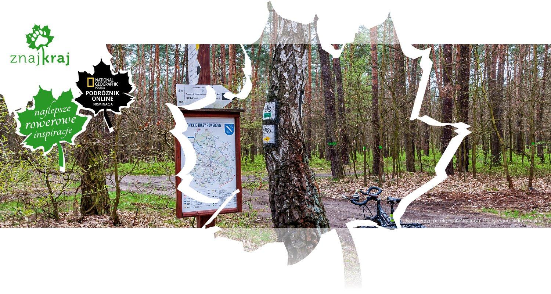 Na rowerze po okolicach Rybnika