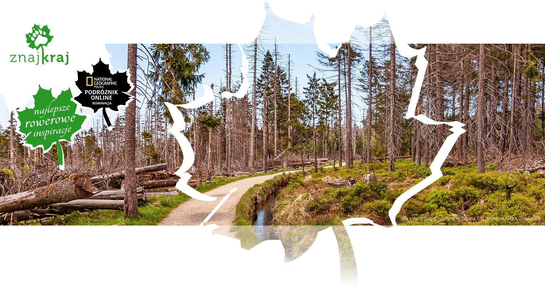 Na szlaku turystycznym w Harzu