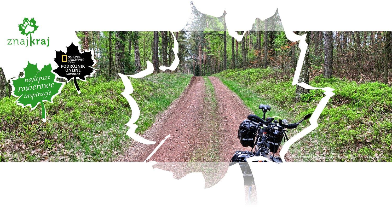Na trasie w lasach przed Kuźnią Raciborską