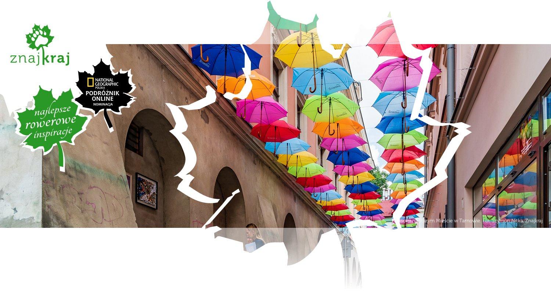 Parasolki na Starym Mieście w Tarnowie