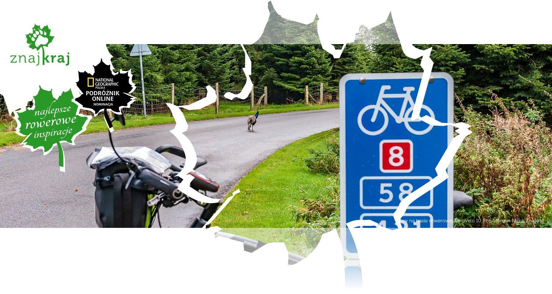 Paw na trasie rowerowej EuroVelo 10