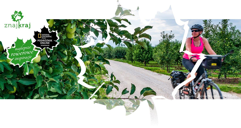 Przez sady owocowe koło Sandomierza