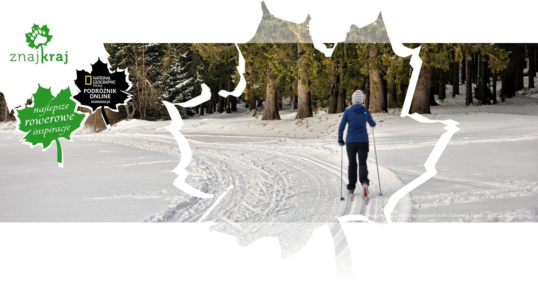 Przygotowana trasa na biegówki koło Zuberzca