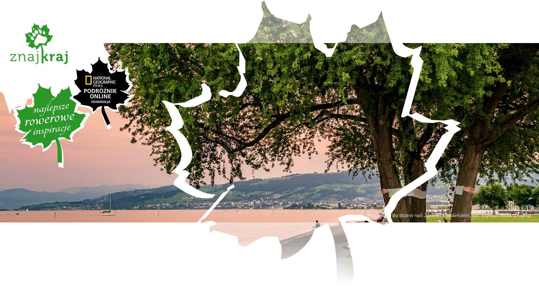 Przytulanie do drzew nad Jeziorem Bodeńskim