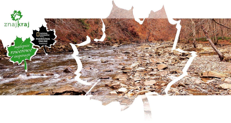 Rezerwat Sine Wiry w Bieszczadach