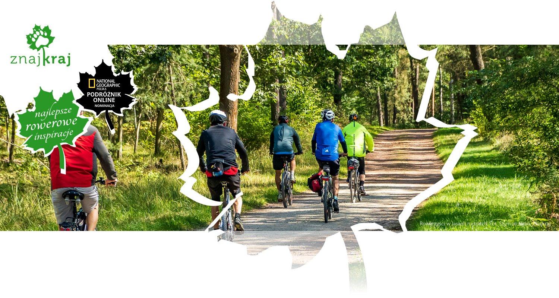 Rowerzyści w lasach rudzkich