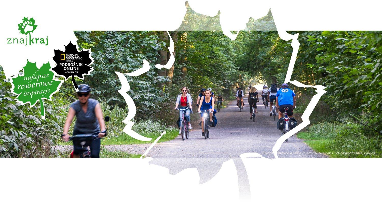 Ruch rowerowy na leśnej magistrali w Lipsku