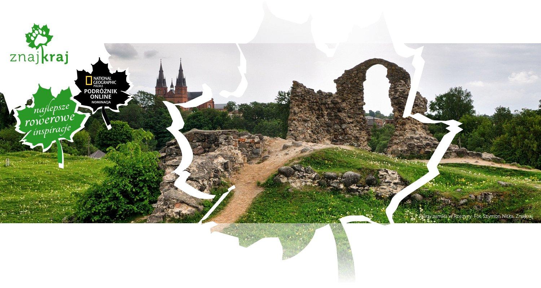 Ruiny zamku w Rzeżycy